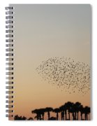 Birds In The Sun Spiral Notebook