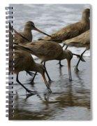 Birds Of A Feather 1 Spiral Notebook