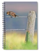Birds On A Barbed Wire Fence Spiral Notebook
