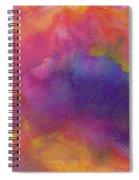 Birth Spiral Notebook