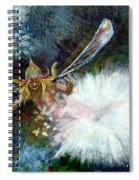 Birth Of A Fairy Spiral Notebook