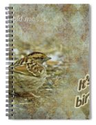 Birthday Greeting Card - White-throated Sparrow Songbird Spiral Notebook