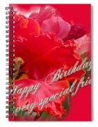 Birthday Special Friend - Red Parrot Tulip Spiral Notebook