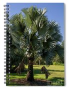 Bismarck Palm Spiral Notebook
