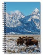 Bison At The Tetons Spiral Notebook