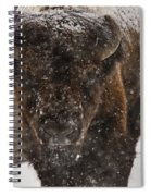 Bison Buffalo Wyoming Yellowstone Spiral Notebook
