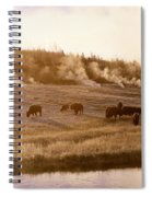 Bison Firehole River Yellowstone Spiral Notebook