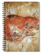 Bison From The Altamira Caves Spiral Notebook