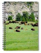 Bison Herd II Spiral Notebook