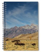 Bison The National Mammal Spiral Notebook