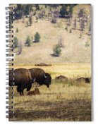 Bison With Calf Spiral Notebook