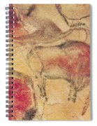 Bisons From The Caves At Altamira Spiral Notebook