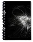 Black And White - 2 - Negative Spiral Notebook