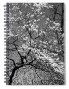 Black And White Blossoms Spiral Notebook