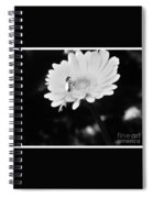 Please Remember I Am A Bee On A Flower Spiral Notebook