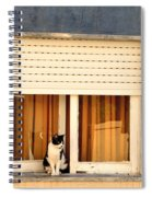 Black And White Cat On The Windowsill Spiral Notebook
