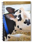Black And White Cow 2 Spiral Notebook