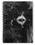 Black And White Cyclops Spiral Notebook