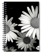 Black And White Daisy 2 Spiral Notebook