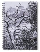 Black And White Day Spiral Notebook