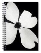 Black And White Dogwood Bloom Spiral Notebook