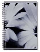 Black And White Floral Art Spiral Notebook