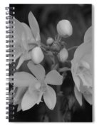 Black And White Flower Spiral Notebook