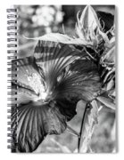 Black And White Hibiscus Spiral Notebook