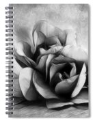 Black And White Is Beautiful Spiral Notebook