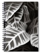 Black And White Leaves Spiral Notebook