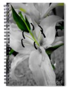 Black And White Life Spiral Notebook