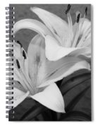 Black And White Lilies 1 Spiral Notebook