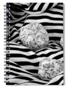 Black And White Lines And Stones  Spiral Notebook