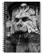 Black And White Lion Fountain On Dubrovnik Stradun, Dubrovnik, Croatia Spiral Notebook