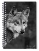 Black And White Mexican Wolf #4 Spiral Notebook