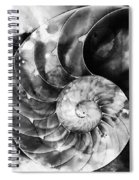 Black And White Nautilus Shell By Sharon Cummings Spiral Notebook
