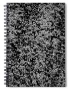 Black And White Orange Parade Spiral Notebook