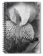 Black And White Orchid Spiral Notebook