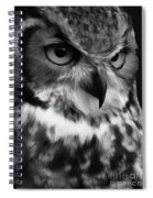 Black And White Owl Painting Spiral Notebook