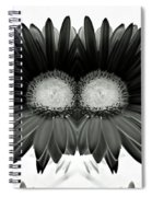 Black And White Petals Spiral Notebook