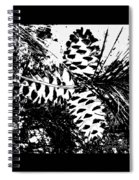 Black And White Pine Cone Spiral Notebook