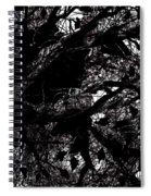 Black And White Spiral Notebook