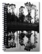 Black And White Reflected Spiral Notebook