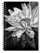 Black And White Reflection Spiral Notebook