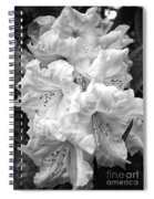 Black And White Rhododendron Spiral Notebook