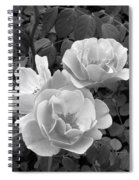 Black And White Roses 1 Spiral Notebook