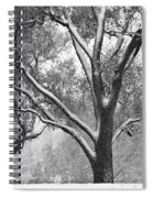 Black And White Snowy Landscape Spiral Notebook