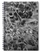 Black And White Sun Flowers  Spiral Notebook