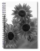 Black And White Sunflowers Spiral Notebook