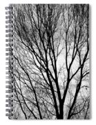 Black And White Tree Branches Silhouette Spiral Notebook